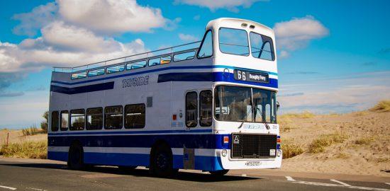 Robertsign-80